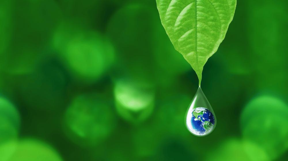 Miljøvennlige løsninger må til